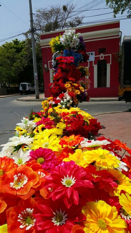 Plastic Flowers #SantaMarta #Colombia