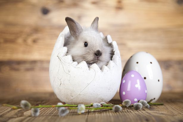 Free ways to entertain the kids this Easter wherever you are ...