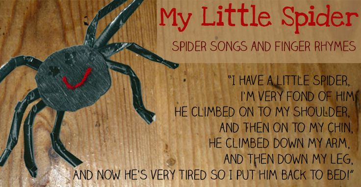 My Little Spider - A cute little tickly spider song - helps little ones not to be scared!  Let's Play Music