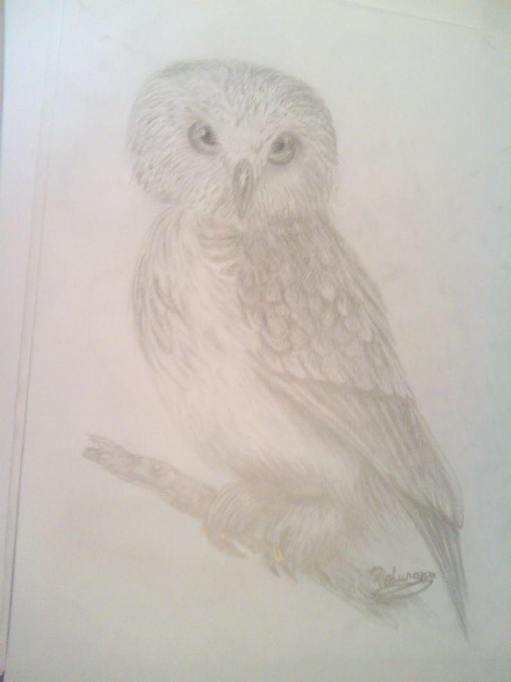 """George the Owl"""