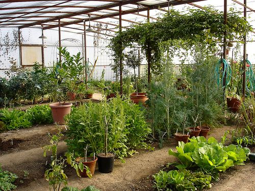 98 Best Images About Vegetable Garden Enclosures On Pinterest Gardens Raised Beds And Diy Fence