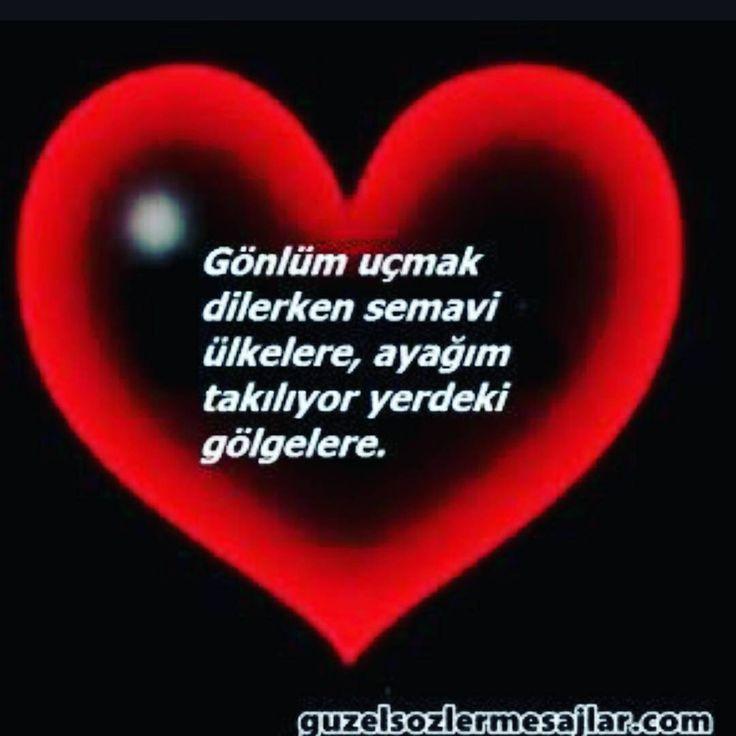 Takip edelim...arkadaslarinizi davet edelim.. @mutluluk_seccadem @mutluluk_seccadem  #turkiye #allah #islam #mevlana #love #ask #istanbul #malatya #izmir #bursa #ankara #ask #sevgi #dua #kul #sahur #iftar #adana #zengin #fakir #dirilis #rize #samsun #ordu #gaziantep #olum #cehennem #komik #sivas #mizah #komedi http://turkrazzi.com/ipost/1515070166761127281/?code=BUGnEoblr1x