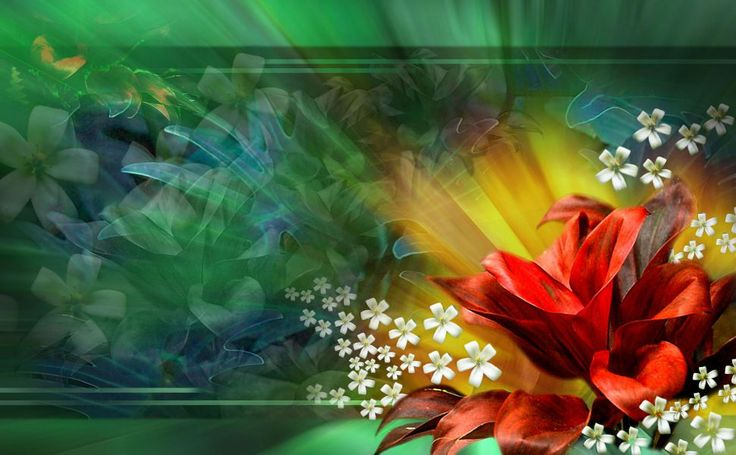 Red Flower Abstract HD Wallpaper