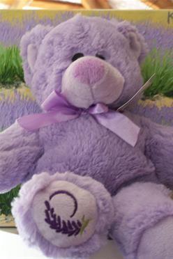 Large Lavender Teddy Lou Lou by Nannup Lavender Farm and Secret Garden Tearooms | Farmhouse Direct