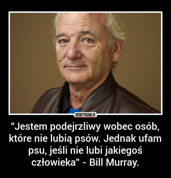 """""""Jestem podejrzliwy wobec osób, które… » Bezuzyteczna.pl- Codzienna dawka wiedzy bezuzytecznej"""