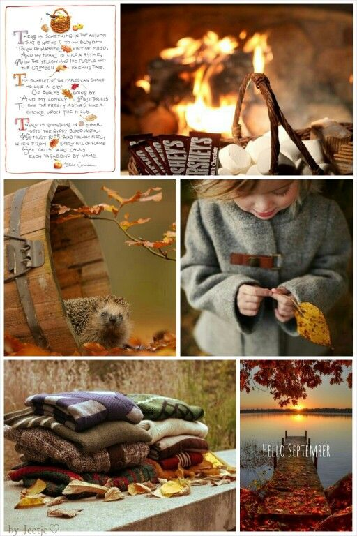 There's something in the autumn. #moodboard #collage #mosaic byJeetje♡