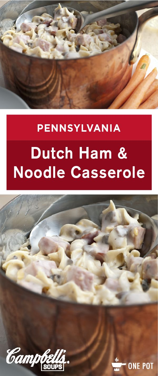 Sure to become a family favorite, this quick cooking Pennsylvania Dutch Ham and Noodle Casserole recipe combines cubed cooked ham, noodles, and tender onions blended with a creamy cheesy sauce. What more could you ask for in a simple dinner dish?