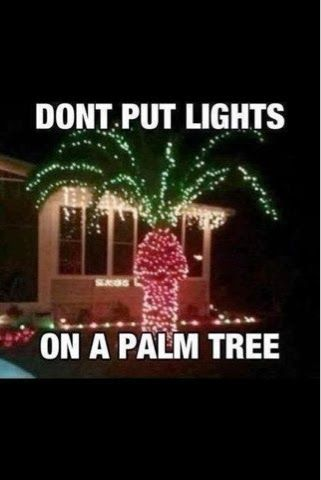 The Christmas Blog 2014: More Funny Christmas Pictures