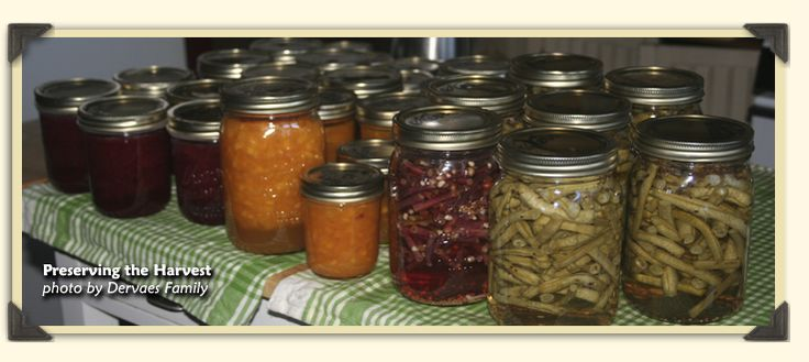 Great Homesteading Resources...