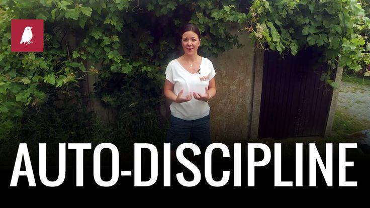 Comment DISCIPLINER nos ENFANTS ?
