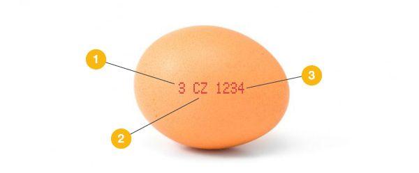 Kupujte správná vejce!