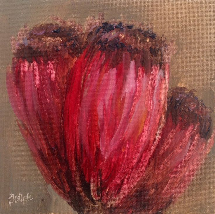 """""""Three protea heads #196"""" daily painting by Heidi Shedlock"""