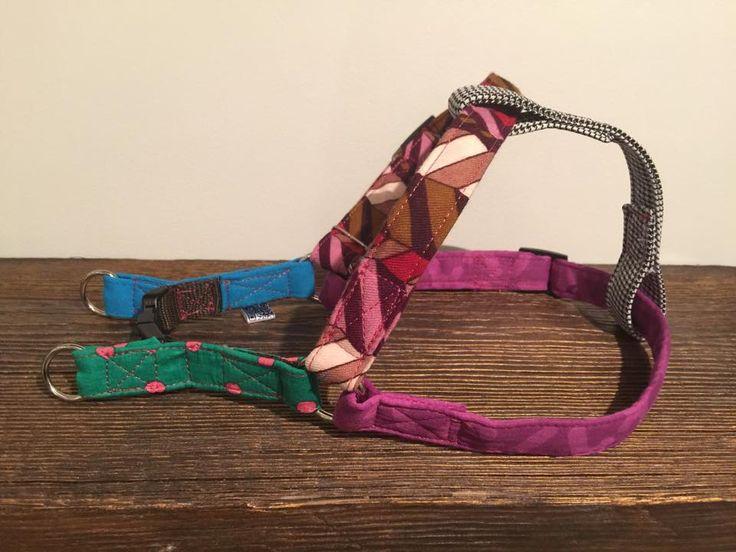 collar for dog