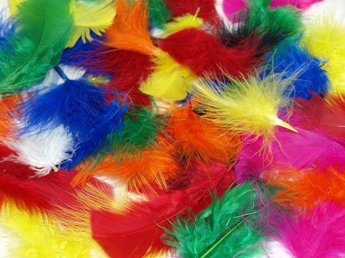 A 25g pack of fluffy craft feathers in assorted bright colours. Hundreds per pack. Great for making dream catchers mobiles and heaps of other kids crafts...