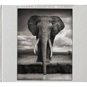 Nick Brandt: On This Earth, A Shadow Falls | photography book -