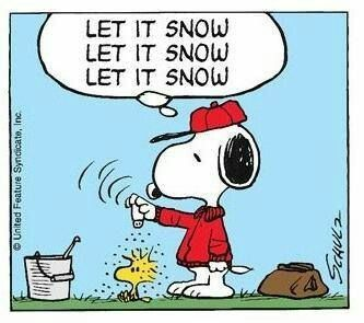 Snoopy and Woodstock. Let it snow ...