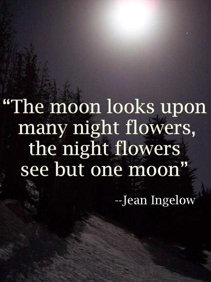 Moon Tumblr Quotes | Graphic and Web Design Software