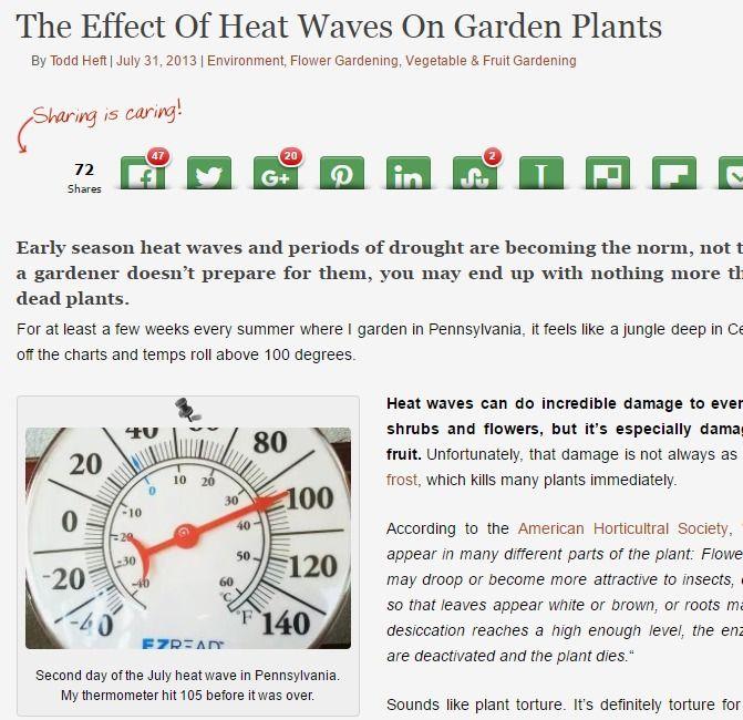 Effect Of Heat Waves On Garden Plants