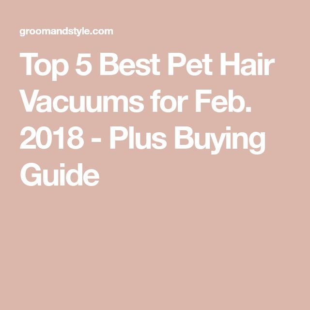 Top 5 Best Pet Hair Vacuums for Feb. 2018 - Plus Buying Guide