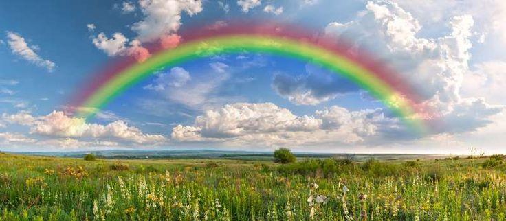Soutien - Le pont de l'arc-en-ciel | Incimal  Entre la Terre et le Paradis, se dresse le pont de l'arc-en-ciel…  Un animal qui meurt se retrouve au pont de l'arc-en-ciel nommé ainsi pour la multitude de couleurs qu'on y retrouve. De l'autre côté du pont, s'étendent des prairies et des collines où tous nos compagnons bien-aimés peuvent courir et s'ébattre ensemble....  Lire la suite sur www.incimal.com