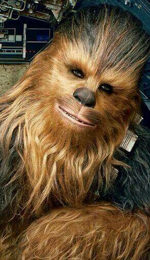 Chewbacca- Star Wars