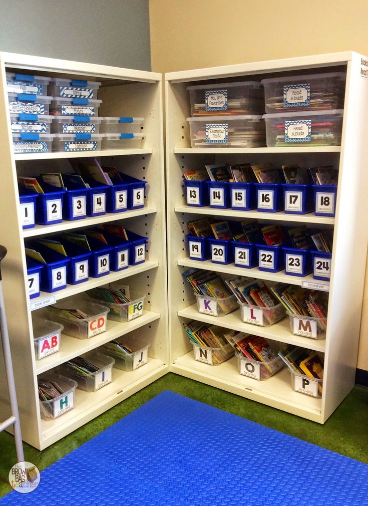 The Brown Bag Teacher (pib) - classroom library - seasonal book storage, personal book boxes, and leveled classroom books all in one place