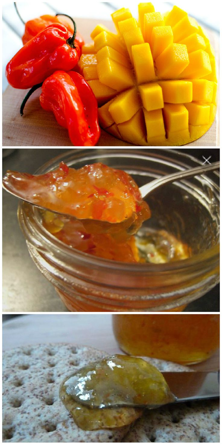 "mango habanero jam - Cynthia posted about this on Facebook and it sounded delicious! she wrote: ""On the agenda this weekend: making mango-habanero jam, which will become mango-habenero wings. Then, Crock-Pot pulled pork, which will then become a pulled pork grilled cheese with pepperjack and mango jam. Then, pumpkin doughnuts, which don't need to become anything else."""