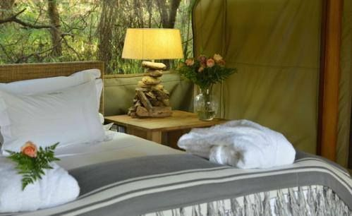 Luxurious tented accommodation, only at Summerfields Rose Retreat and Spa