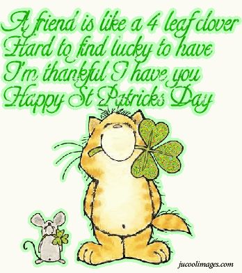 364 best happy st patricks day also happy birthday anyone for Funny irish sayings for st patrick day