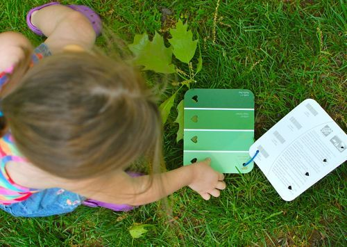 Outdoor activity: Use paint chips, find things outside that match the colors (could use inside, too)
