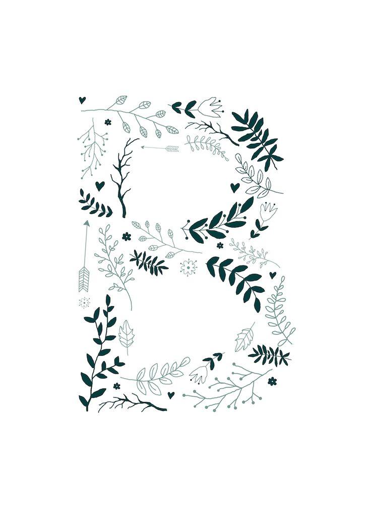 Botanical B illustration