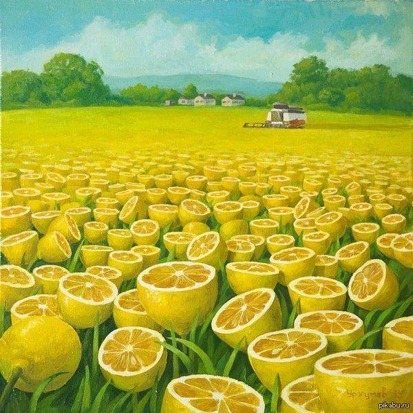 Лимонное поле.