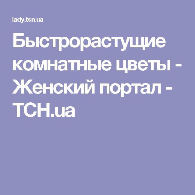 Быстрорастущие комнатные цветы - Женский портал - TCH.ua