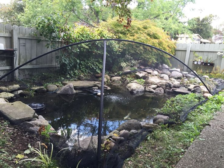 Best 25 pond covers ideas on pinterest pond decorations for Fish pond nets