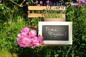 Frohe Pfingsten🌺 – Vidensus