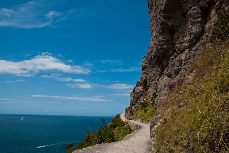 Walk to the summit of Mt Maunganui, Bay of Plenty