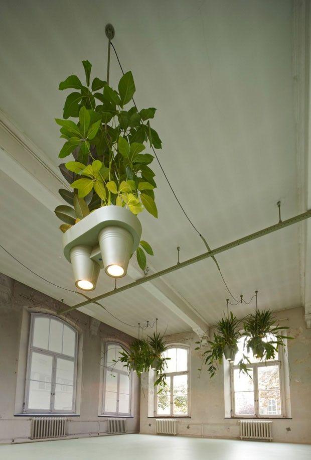Traga a floresta para dentro de casa Designer cria híbrido de luminária e cachepô