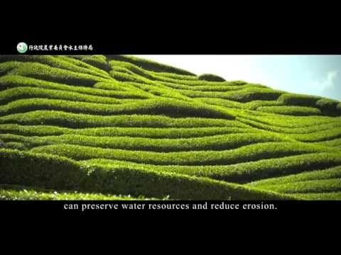 Soil and Water Conservation measures on slope farmland - YouTube