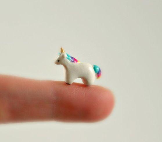 Ermagerd a tiny baby unicorn!
