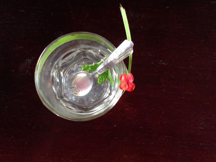 Pretty lemongrass basil seed tea xxx