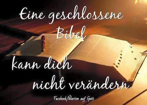 Bibel                                                                           …