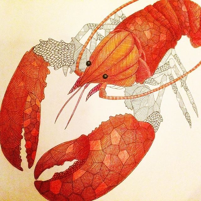 Animalkingdom Milliemarotta Coloredpencils Coloringforadults Coloring BooksColouringAnimal KingdomLobsters