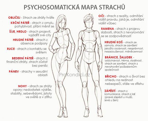 Tělo si všechno pamatuje: kde jsou ukryty stopy toho, co jsme prožili | ProKondici.cz