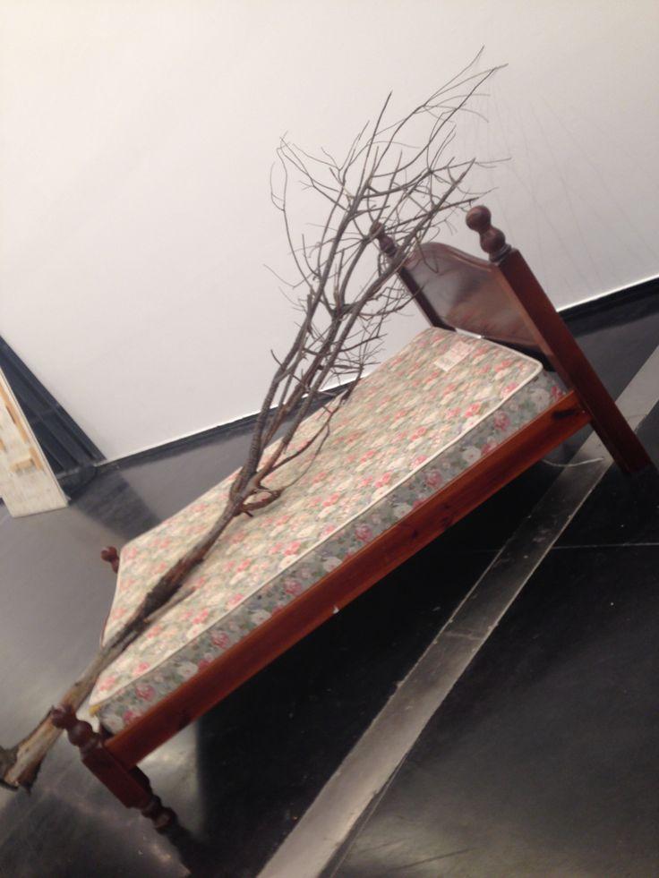 'Eucalyptus standard' - George Warburton