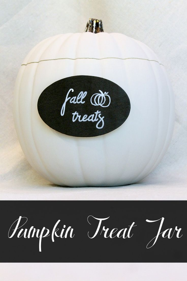 Craft pumpkin  ideas- DIY pumpkin treat jar!