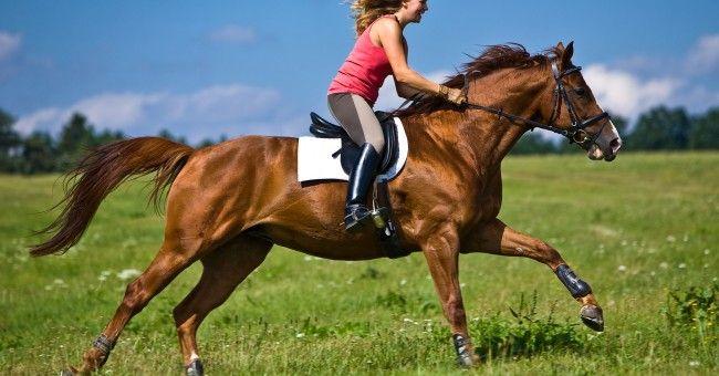 Trotar a caballo sin rumbo y dejarme llevar...