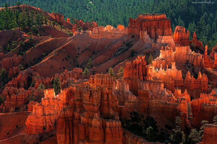 USA, Utah, Park Narodowy Bryce Canyon, Skały, Kanion, Las