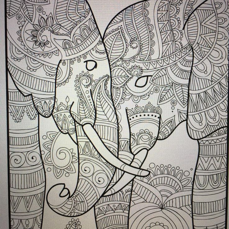 173 best elephant coloring pages for adults images on Coloring books for adults on amazon