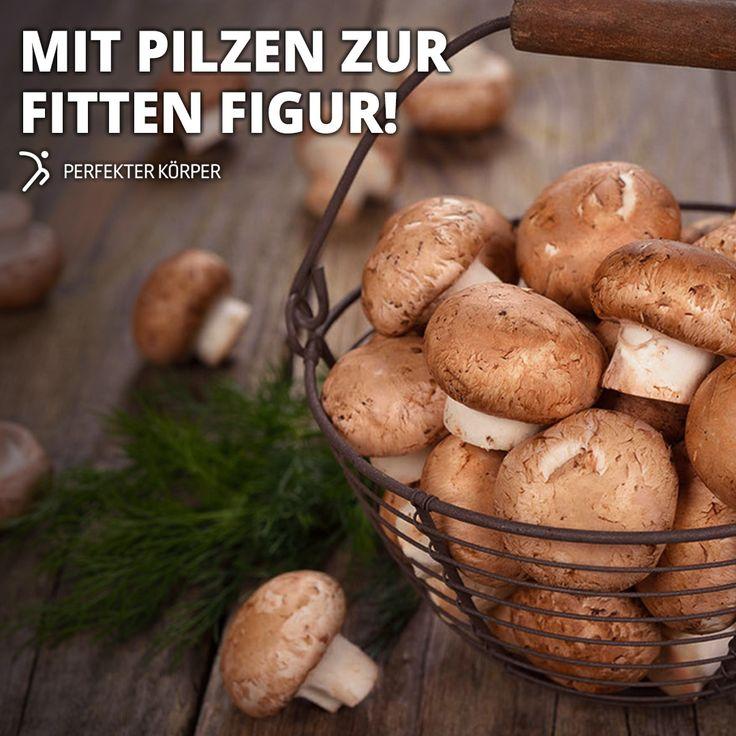 🍄👌 KLEINE KRAFTPAKETE 👌🍄  🍄Pilze liefern wertvolles Eiweiß - vor allem Steinpilze (5,5%), Champignons, Pfifferlinge und Austernpilze. 🍄Pilze gehören zu den kaliumreichsten Lebensmitteln.  🍄Pfifferlinge sind ein ausgezeichneter Eisenlieferant. 🍄Steinpilze liefern sehr viel Selen und Zink. 🍄Champignons sollen eine krebshemmende Wirkung haben und das Wachstum von Brusttumoren hemmen.  🍄Sehr kalorienarm - die meisten Pilzsorten enthalten zwischen 10 und 30 kcal pro 100 g.