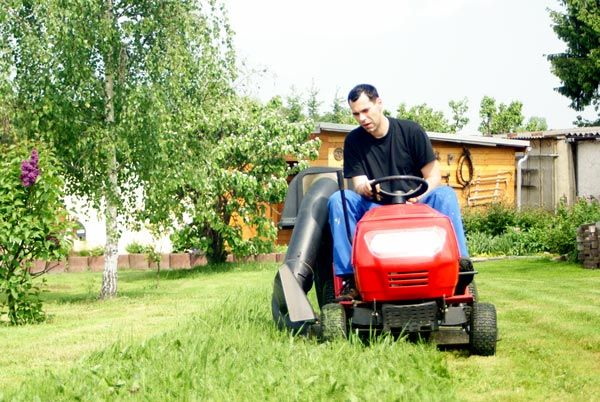Keep your lawn in ship-shape this season with these easy and affordable lawn care tips.